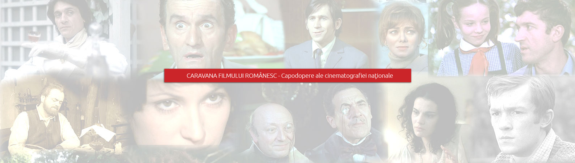 Asociatia CineCultura